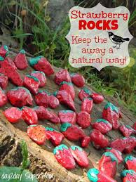 Small Picture 26 Fabulous Garden Decorating Ideas with Rocks and Stones