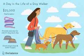 Pet Sitter Profile Examples Dog Walker Job Description Salary Skills More