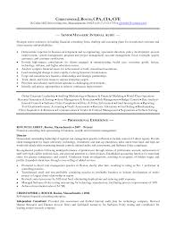 Ideas Of Big Four Accounting Resume Sample Stunning Big 4 Resume