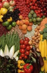Сушка овощей плодов ягод