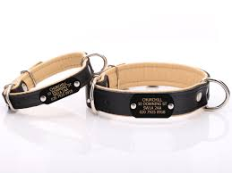 black beige leather dog collar with nameplate