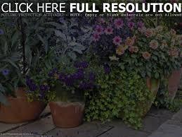 Best 25 Backyard Garden Design Ideas On Pinterest  Side Yard Container Garden Design Plans
