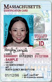 And New The Card A License Guide To Identification
