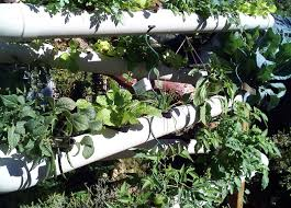 Vertical Garden Design Ideas Simple Vertical Garden Idea 48 Outdoor Vertical Gardening Pinterest