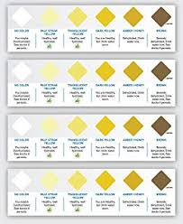 Urine Color Hydration Sign Amazon Com Industrial Scientific