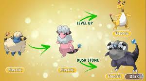 Shuckle Pokemon Evolution Chart Future Pokemon Evolutions 2 Fanmade