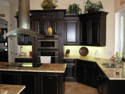 Kitchens With Black Cabinets And Appliances Cabinet Ideas Photo 4 To Perfect Design