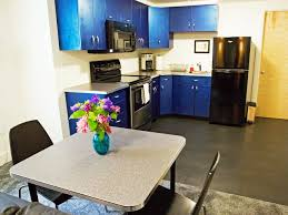 Basement Kitchens Design A Basement Apartment Hgtv