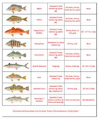 24 Uncommon North Carolina Saltwater Fish Chart