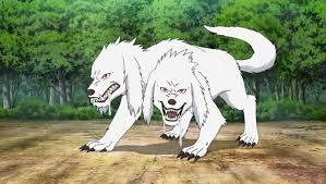 Human Beast Combination <b>Transformation</b>: Double-Headed Wolf ...
