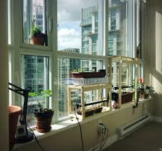 Indoor Garden Eat Healthy All Winter Long With Your Own Indoor Garden Avas Flowers