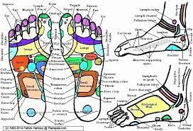 Itec Reflexology Blank Foot Chart 40 Cogent Reflexology Chart Prostate