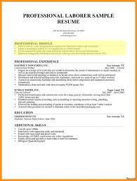 Resume Template Examples Of Resume Profiles Diacoblog Com