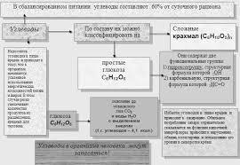 Реферат Углеводы как главный источник энергии в организме  Углеводы как главный источник энергии в организме человека
