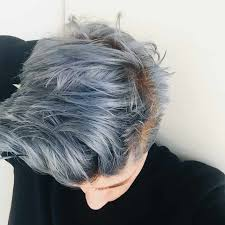 Grey Hair Grey Hairstyle Gray Hair