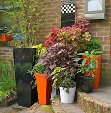 container gardens made for the shade
