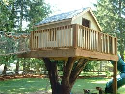 Decorations:Tree House Design Ideas Cool Tree Platform Design With Nice And  Safe Wood Railing