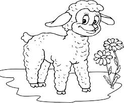 Spring Lamb Coloring Pagesllllllll