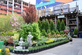 bachmans garden center. Garden Center Awesome Chelsea Bachmans