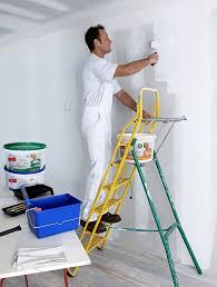 profhome elf all purpose paint for
