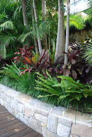 best 25 tropical pool landscaping ideas on pool notice the layering of plants in this bed imagine a few grey trunked palms rising