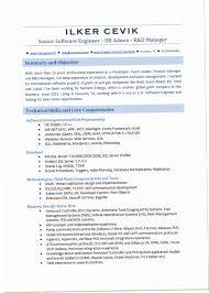 Net Developer Resume Gorgeous Net Developer Resume 48RSF Resume For Asp Net Developer Resume Cute