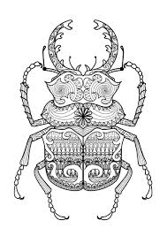 Small Picture Coloring Pages Animals Coloring Zentangle Beetle By Bimdeedee