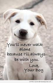 cute dog quotes and sayings. Unique Sayings Inside Cute Dog Quotes And Sayings