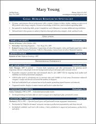 summary job description of hr manager professional resume cover summary job description of hr manager monster human resources manager job description sample sample resume profile