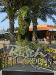 busch gardens tampa vacation packages. busch gardens - tampa, fl tampa vacation packages
