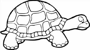 Small Picture Coloring Pages Animals Red Eared Slider Turtle Coloring Page