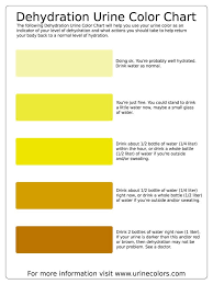 Urine Colour Chart Pregnancy This Dehydration Urine Color Chart Will Help You Use Your