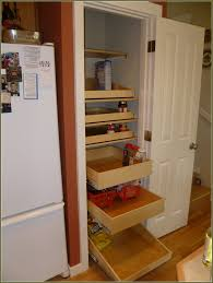 Pull Out Racks For Kitchen Cabinets Pull Out Drawers For Kitchen Cabinets  Ikea Cabinet Ideas To