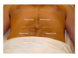 Smärta vänstra sidan av magen