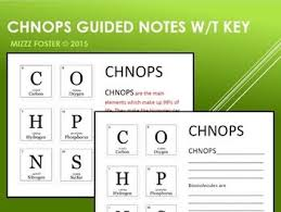 best biomolecules biochemistry images  chnops elements of life guided notes key