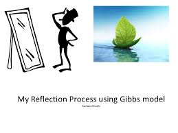 my reflection process my reflection process using gibbs model
