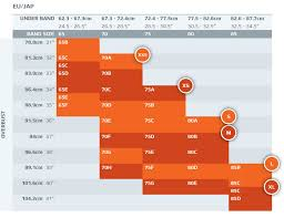 2xu Compression Socks Size Chart 2xu Compression Socks Size Chart Image Sock And