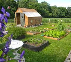 my potting shed is the focal point of my kitchen garden