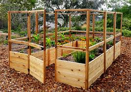 garden in a box kit with deer fence kit
