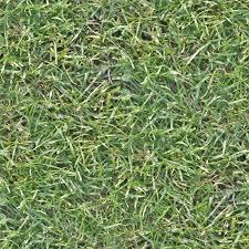 tall grass texture seamless. Seamless High Res Grass Texture Tall