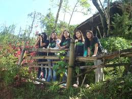 my unforgettable experience baguio your holiday haven mespeaks image image image image image