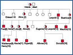 Haemophilia In Queen Victorias Descendants Queen Victoria