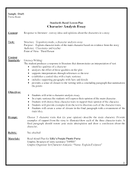 essay writing tips to college application essay service lesson plans college application essay service lesson plans