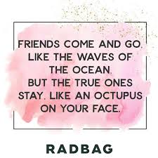 Beste Freunde Sprüche Geschenke Erinnerungen Beste Freunde