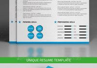 guerrilla resumes 11 guerrilla resume template idea on chipper 548 kapari