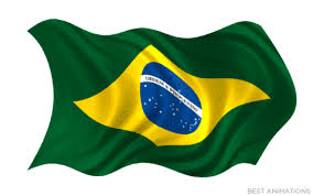 Image result for brazil flag