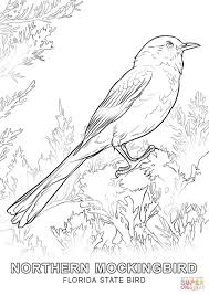 Small Picture Florida State Bird coloring page Free Printable Coloring Pages