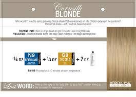 Beth Minardi Color Formulas Blondes Brunettes Reds
