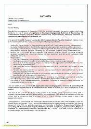 Resume Beautiful Resume Word Document Template Resume Word