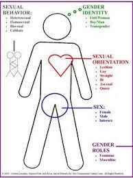 54 Best Visualizing Gender Identity Binaries Spectrums